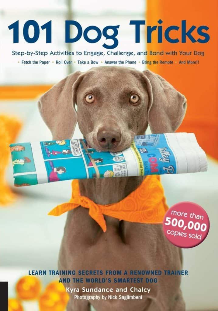 101 dog tricks activities challenge
