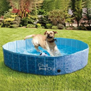 all for paws extra large dog swimming pool collapsible pet bathing tub anti slip uv test approved great for dogs and kids