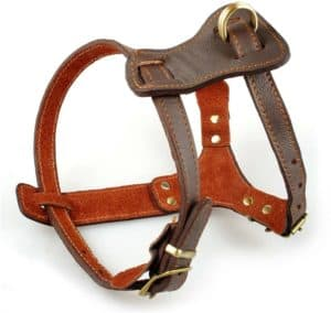 beirui leather dog harness for small medium and large dogs