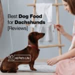 Best Dog Food for Dachshunds [2021 Reviews]