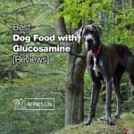 5 Best Dog Food with Glucosamine for Joint Health 2021 [Reviews]