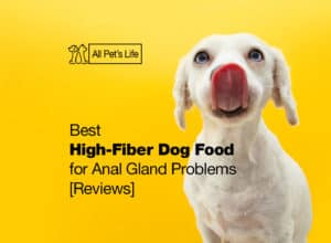 Read more about the article 5 Best High-Fiber Dog Food for Anal Gland Problems [2021 Reviews]