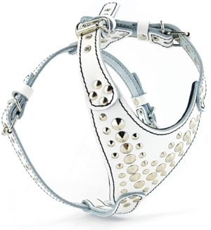bestia studded leather harness french bulldog size leather handmade in europe