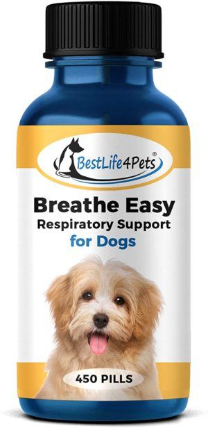 bestlife4pets breathe easy respiratory support for dogs natural relief for kennel cough runny nose sneezing and sinus congestion non drowsy easy to use