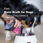 11 Best Bone Broth for Dogs 2021 Why They Need It [Reviews]