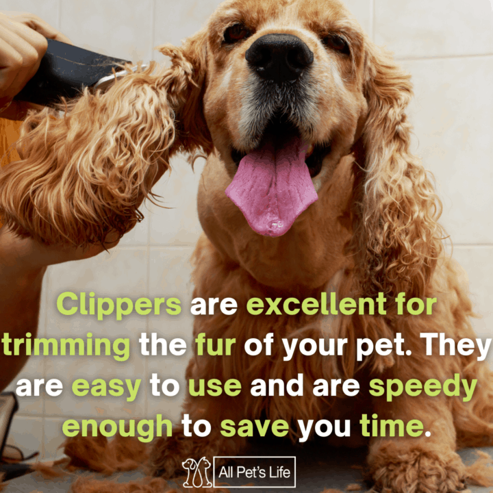 best dog clippers for matted hair, grooming matted dog
