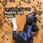 Can I Safely Feed My Diabetic Dog Treats? [2021 REVIEWS]