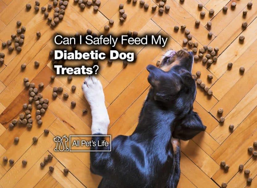 diabetic dog treats reviews