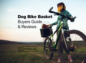Read more about the article 11 Best Dog Bike Basket Reviews 2021 [Dog on a Bicycle]