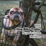 10 Best Dog Bike Trailer Reviews [2021 Buyer's Guide]
