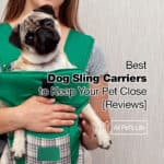 10 Best Dog Sling Carrier Reviews to Keep Your Pet Close [2021]