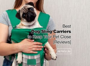 Read more about the article 10 Best Dog Sling Carrier Reviews to Keep Your Pet Close [2021]