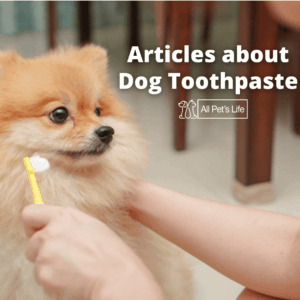 dog being brushed by a human
