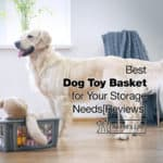 9 Best Dog Toy Basket for Your Storage Needs 2021 [Reviews]