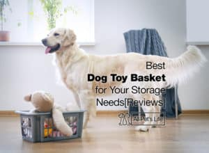 Read more about the article 9 Best Dog Toy Basket for Your Storage Needs 2021 [Reviews]