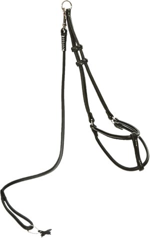 dogline soft and padded round rolled leather step in harness with leash