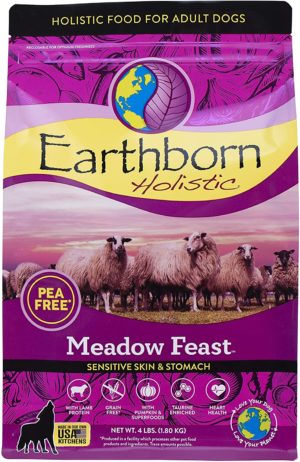 earthborn holistic meadow feast grain free natural dry dog food 4 lb