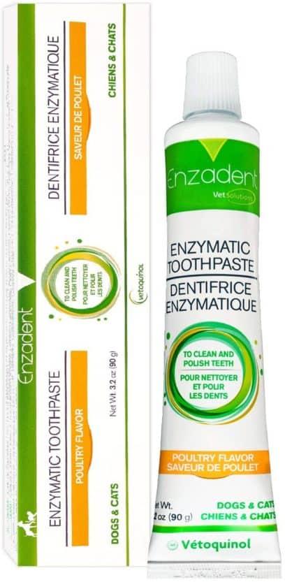 enzadent enzymatic toothpaste by vetoquinol