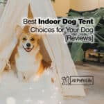 12 Best Indoor Dog Tent Choices for Your Dog [2021 Reviews]