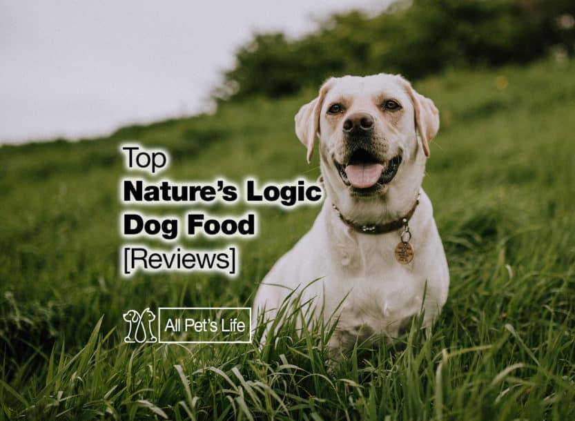 natures logic dog food