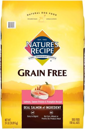 natures recipe grain free easy to digest dry dog food with real meat sweet potato and pumpkin
