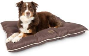 pet craft supply super snoozer calming indoor or outdoor all season water resistant durable dog bed