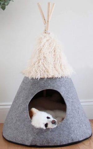 petnpurr pet teepee tent with super plushy self warming cushion small dog bed and puppy house