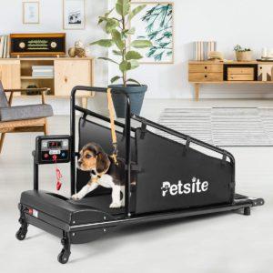 dog on a petsite dog treadmill pet dog running machine for small medium sized dogs pet fitness treadmill