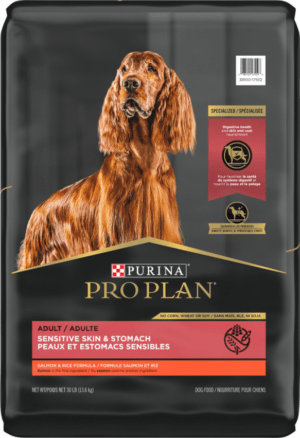 purina pro plan focus adult dry dog food wet dog food