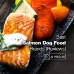 12 Best Salmon Dog Food Brands [2021 REVIEWS]