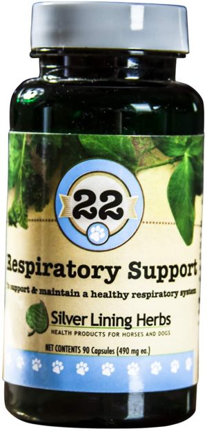 silver lining herbs respiratory supports and maintains a dogs lung function and a healthy respiratory system