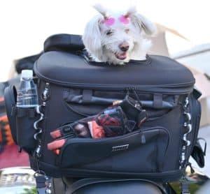 sresk motorcycle dog or cat carrier bag pet voyager pet travel bag for luggage rack or passenger seat with sissy bar straps