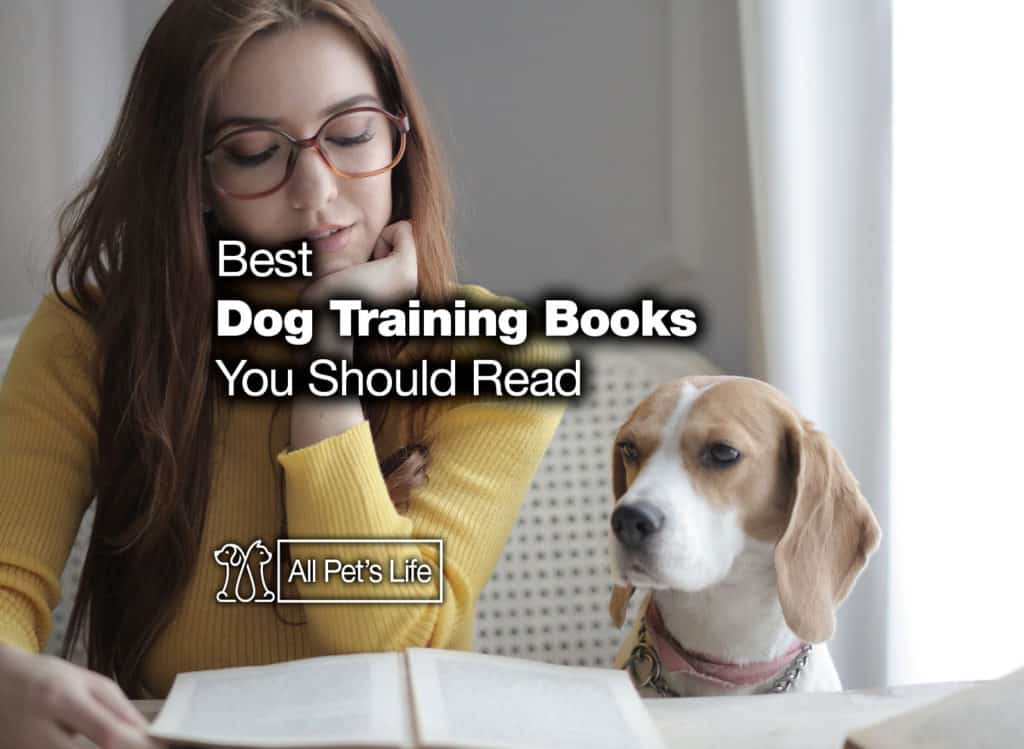 the best dog training books