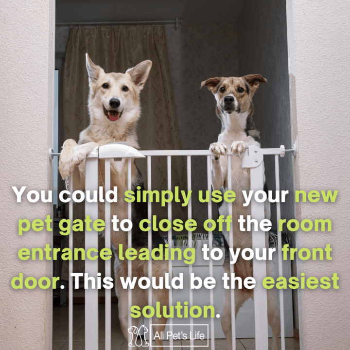 two dogs in a Retractable Dog Gate